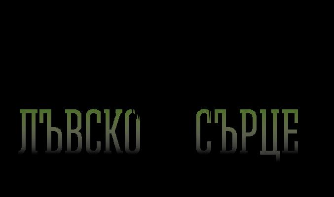 lionheart_logo_bg